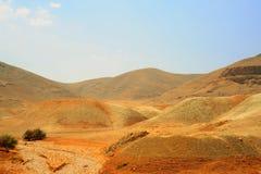 Dry Riverbed. In Desert Near Jordan Valley, Israel Royalty Free Stock Photos