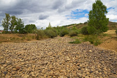 Dry  Riverbed Royalty Free Stock Image