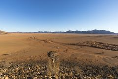 Dry riverbed in the desert. Namibia stock images