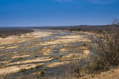 Dry Riverbed, during drought of 2016, Kruger National Park stock images