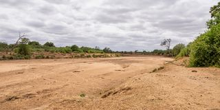 Dry Riverbed. A dry riverbed in Limpopo, South Africa stock photography
