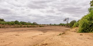 Dry Riverbed. A dry riverbed in Limpopo, South Africa royalty free stock photos