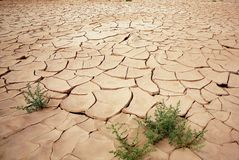 Dry riverbed. Eastphoto, tukuchina,  Dry riverbed, nature beauty Royalty Free Stock Image