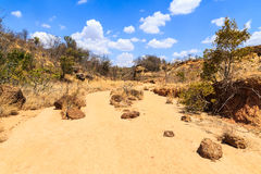 Dry riverbed landscape on a warm sunny day Stock Photography