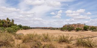 Dry Riverbed. A dry riverbed in Limpopo, South Africa royalty free stock photography