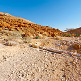 Dry Riverbed Royalty Free Stock Photo