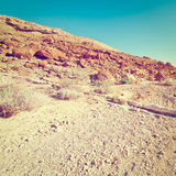 Dry Riverbed. In the Negev Desert, Instagram Effect Royalty Free Stock Images