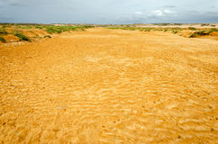 Dry Riverbed. Dry river bed in a desert in La Guajira, Colombia Royalty Free Stock Image