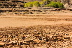 Dry riverbed surface cracked Royalty Free Stock Images