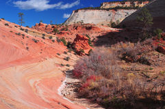 Dry riverbed in the Utah high desert Royalty Free Stock Images