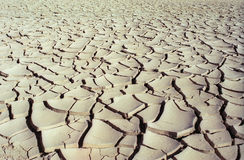 Dry road Stock Images