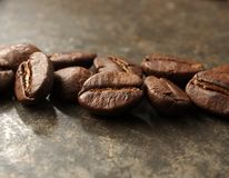 Dry roasted coffee beans Stock Image