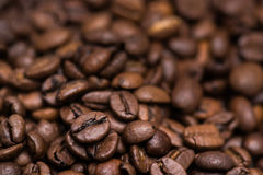 Dry roasted coffee beans Stock Photos