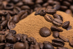 Dry roasted coffee beans Stock Images