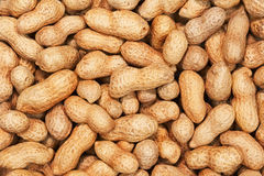 Dry roasted peanuts. Royalty Free Stock Image