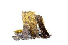 Dry roasted seaweed isolated on white background Royalty Free Stock Images