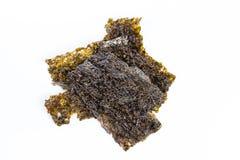 Dry roasted seaweed isolated on white background Royalty Free Stock Image