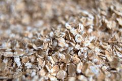 Dry rolled pile of oats closeup. Closeup deep blur and bokeh Royalty Free Stock Photo