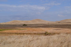 Dry rolling hills of California Stock Photography