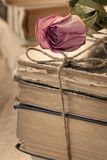 Dry rose and books Stock Photo