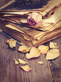 Dry rose and  books Royalty Free Stock Image