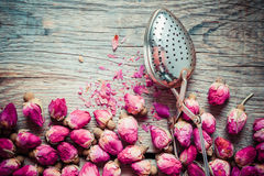 Dry rose buds tea and tea infuser. Royalty Free Stock Photos