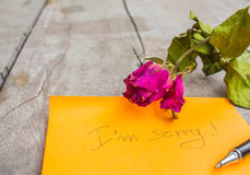 Dry rose and condolences Stock Photography