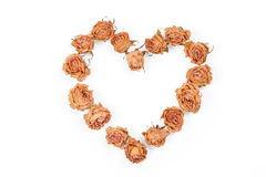 Dry rose flowers heart isolated on white background. Valentine. Royalty Free Stock Photo