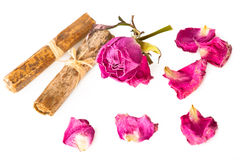 Dry rose and herbs Royalty Free Stock Photography