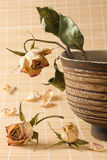 Dry rose with leaves in wooden bowl still-life Royalty Free Stock Image
