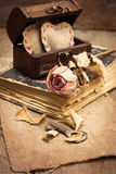Dry rose, old book Royalty Free Stock Photography