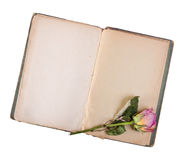 Dry rose and old book isolated on white Royalty Free Stock Images