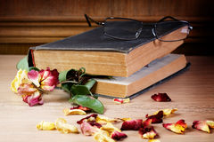 Dry rose and the old book Stock Images