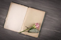Dry rose and old book on wooden background Stock Photos