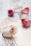 Dry rose and old letters Stock Photography