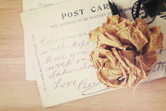 Dry rose and old postcard. Soft light vintage style image Royalty Free Stock Image