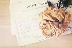 Dry rose and old postcard. Soft light vintage style image. Royalty Free Stock Images