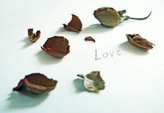 Dry rose petals. Dry rose & rose petals on a white surface with the word 'Love' scribbled on it stock images