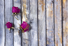 Dry  rose petals  on old wooden plates. Royalty Free Stock Images