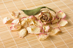Dry rose petals on a reed mat Stock Image