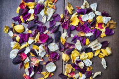 Dry rose petals on wooden background Stock Image