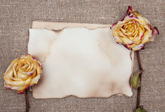 Dry roses and aged paper on the burlap Stock Photo
