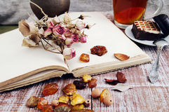 Dry roses, amber and the empty open book Stock Photos