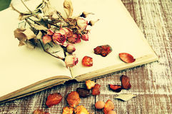 Dry roses, amber and the empty open book Royalty Free Stock Photo