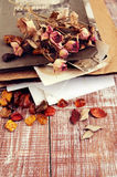 Dry roses, amber and old album with photos Royalty Free Stock Photos