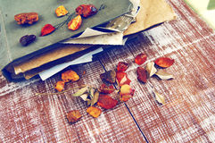 Dry roses, amber and old album with photos Royalty Free Stock Photo