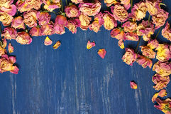 Dry roses background Stock Photos