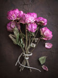 Dry Roses on Leather Stock Photos