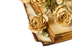 Dry roses and old book Royalty Free Stock Photo