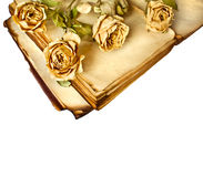 Dry roses and old book Stock Photo